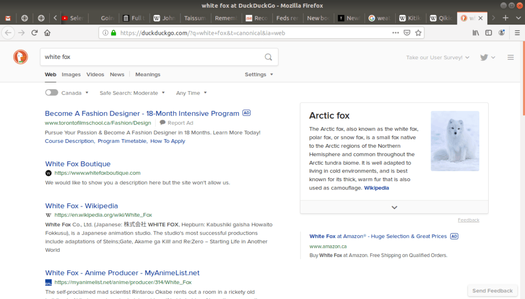 New tab open after searching white fox with duckduckgo.