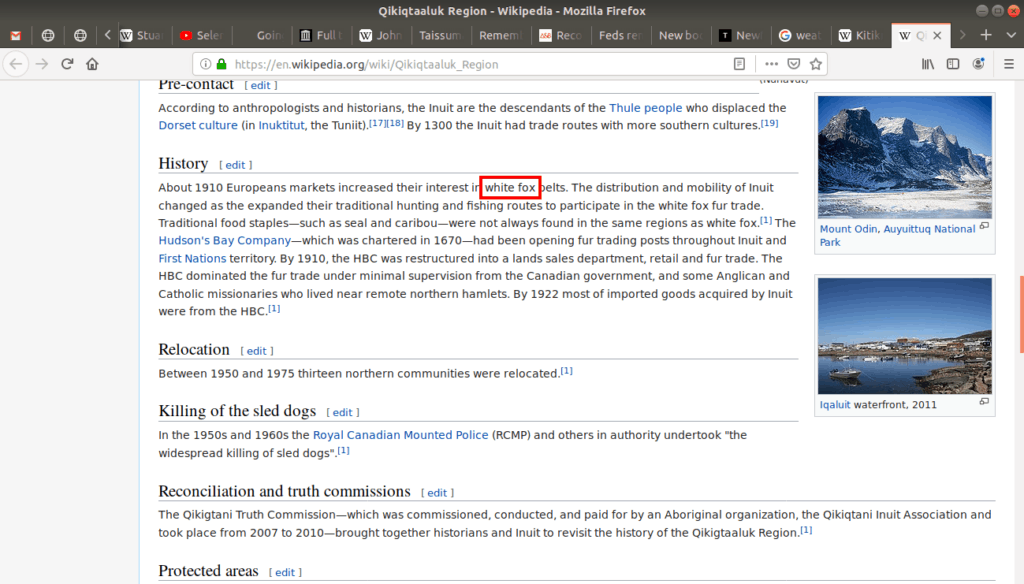 The term white fox outlined on Wikipedia.