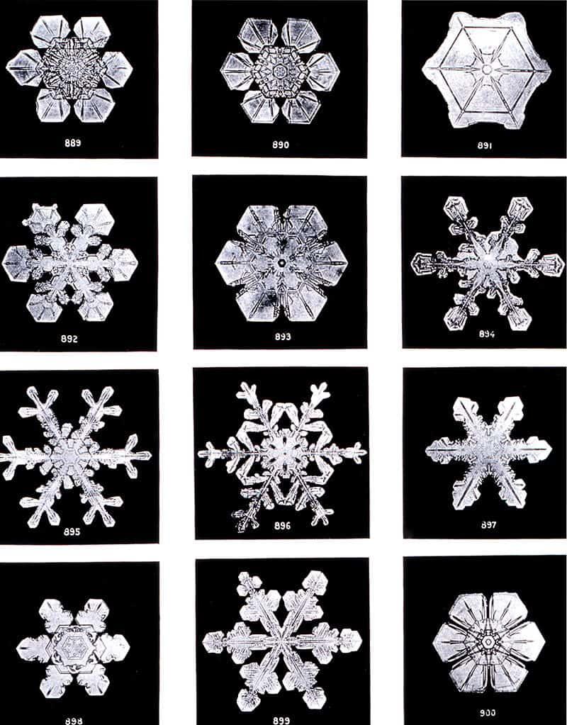 Different snowflakes.