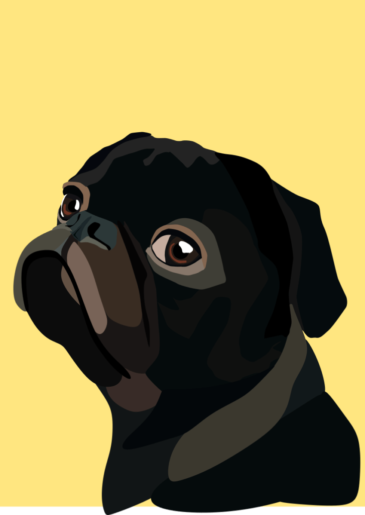 A pug in various shades of brown and black, drawn by digital artist Alyssa Amell.