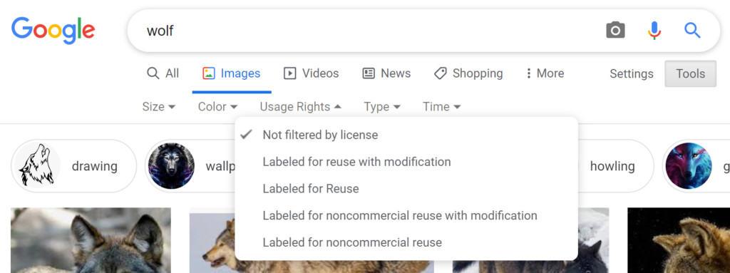 A sample Google search.