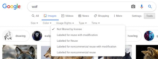A Google image search with usage right settings applied.