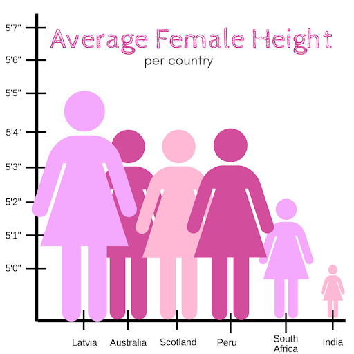 A sample graph about average female height.