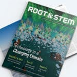 Root & STEM Issue 1