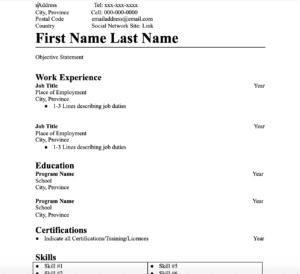 A resume before it is filled out with all the information directly related to someone applying for a job.